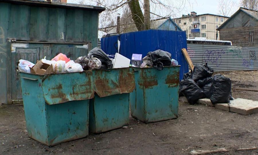 Сегодня два перевозчика твёрдых коммунальных отходов региона приостановили работу повывозу мусора