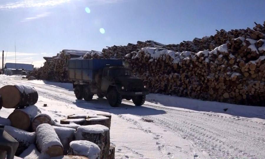 Ситуация собеспечением жителей Мезенского района дровяным топливом остаётся сложной