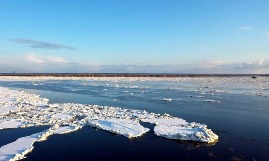 В Архангельской области - ледоход