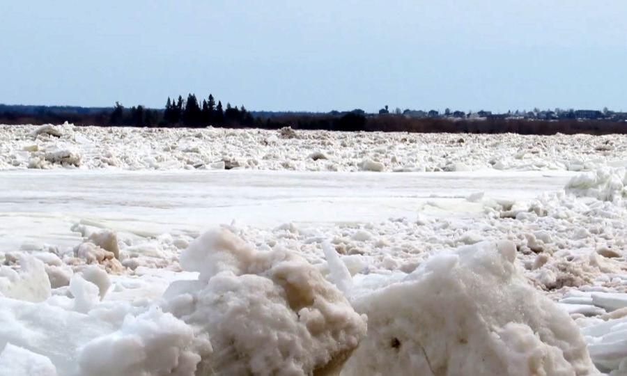 Накануне в Архангельской области произошло объединение двух ледоходов — «Сухонского» и «Важского»