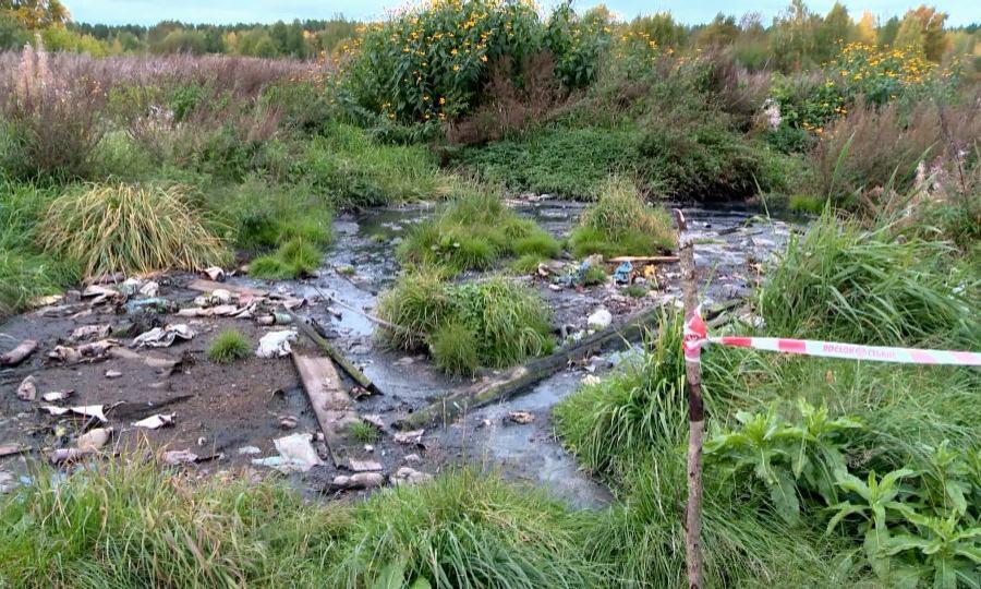 ВКоряжме специалисты Росприроднадзора расследуют дело опрорыве канализации